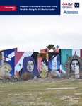 Dreamers and Donald Trump: Anti-Trump Street Art Along the US-Mexico Border by Julia Becker