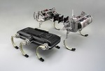 Laboratory on Legs: An Architecture for Adjustable Morphology with Legged Robots