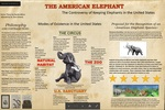 The American Elephant: The Controversy of Keeping Elephants in the United States