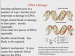 8.2 - Biological Effects of Ionizing Radiation